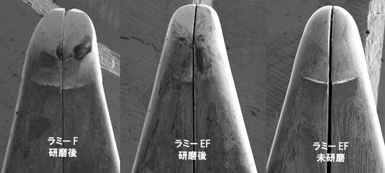 03ラミーペン先電子顕微鏡写.jpg